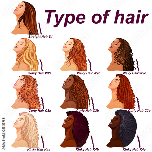 Fotografía  Hair types chart displaying all types and labeled