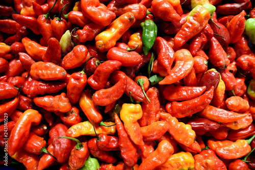Fotografie, Obraz  Freshly harvested colorful red, orange, yellow and green chili peppers in a farmers market in Medellin, Colombia