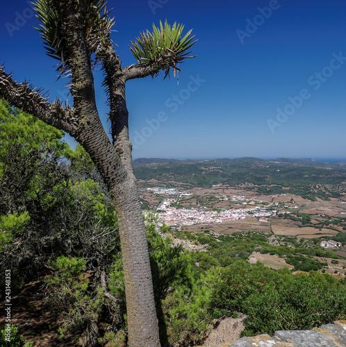 Foto  Blick auf Es Mercadal auf Menorca vom El Toro