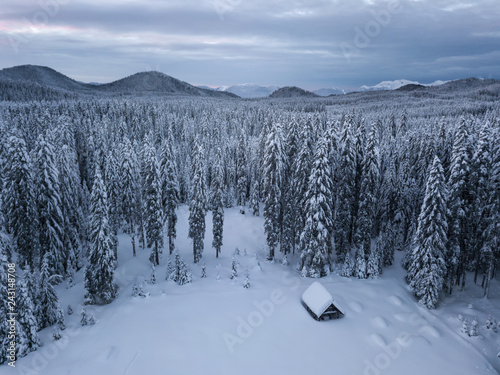 фотография  Snow covered winter forest landscape aerial view with pines and mountains in the background