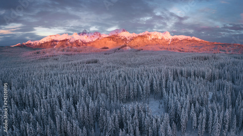 Photo  Snow covered winter forest landscape aerial view with pines and mountains in the background