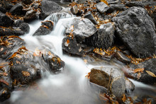 Fall Scenery In Forest With Flowing River In Long Exposure In Selective Color