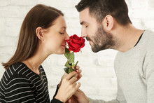Portrait Of Young Couple Smelling A Red Rose, Celebration Of The Anniversary, Valentine's Day Or Birthday