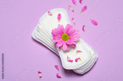 Woman's Sanitary Pads and Gerbera Daisy Flower, Feminine Hygiene Concept Wallpaper Mural