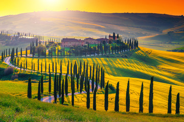 Panel Szklany Do jadalni Breathtaking Tuscany landscape with curved road and cypresses trees, Italy