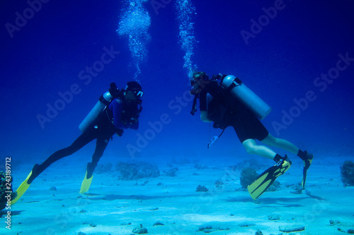 Photo  Two divers under water