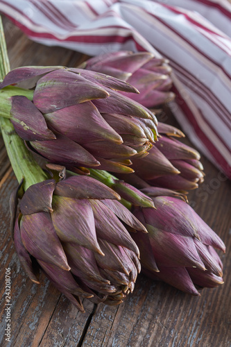 Purple artichokes Canvas Print