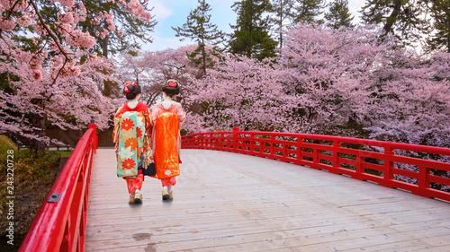 Fotobehang Kersenbloesem Japanese geisha with Full bloom Sakura - Cherry Blossom at Hirosaki park, Japan