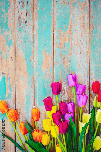 Tulip blossom flowers on vintage wooden background, border frame design. vintage color tone - concept flower of spring or summer background