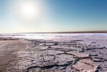 Steppe Saline Soils. Steppe Pr...