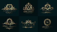 Luxury Wedding Logo With Ornam...