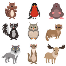 Cute Forest Animals And Birds ...