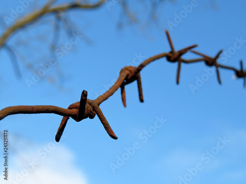 Fotografía  Rusty barbed wire against blue sky with clouds and bare branches