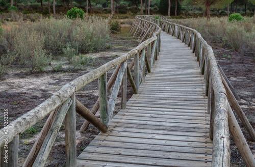 Fotografie, Obraz  Wide angle of wooden footbridge track over dry wetlands