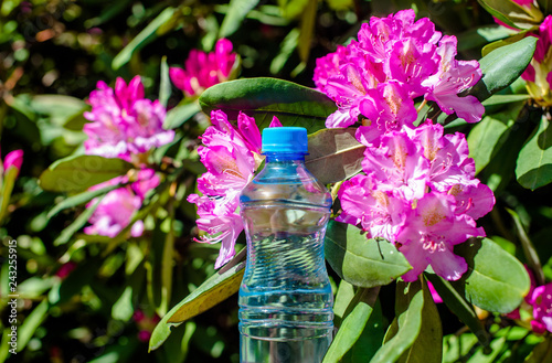 Fotografía  A bottle of drinking water stands against the background of a violet rhododendro