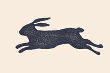 Rabbit, Hare, Silhouette. Vint...