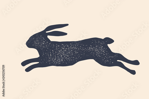 Fotografie, Obraz Rabbit, hare, silhouette. Vintage logo, retro print, poster