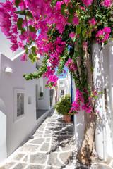 Panel Szklany Romantyczny Weiße Gasse mit bunten Oleander Blumen und weißen Häusern auf den Kykladen im Sommer, Griechenland