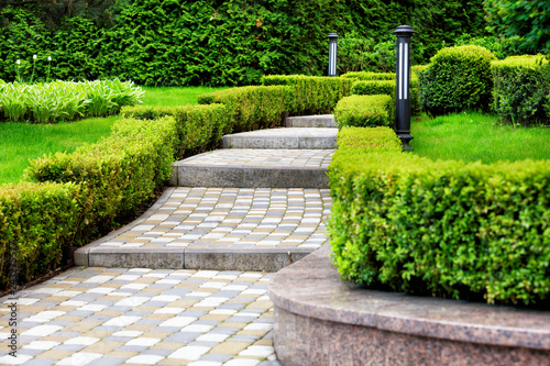 Poster de jardin Beige Paved cobblestone trail in a beautiful park, framed by cropped bushes in the rays of soft light