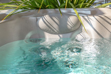 Hot Tub With Decorative Plants...