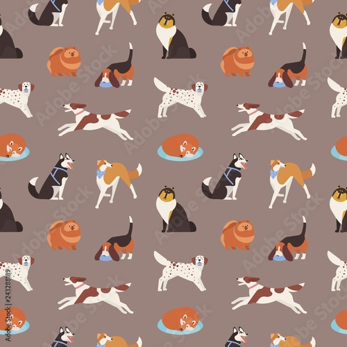 obraz lub plakat Seamless pattern with cute dogs of various breeds playing, running, walking, sitting, sleeping. Backdrop with adorable cartoon pet animals on grey background. Flat cartoon vector illustration.