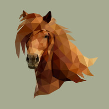 The Head Of Beautiful Horse Consisting Of Triangles - Vector