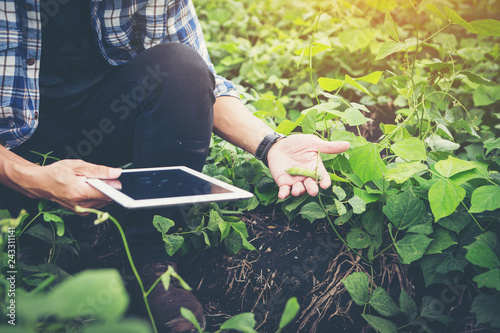 Photo smart farmer using technology in an agriculture field ;man checking by using tab