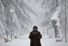 Winter Backgground