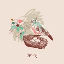 Spring Background, A Bird Nest...