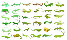 Lizard Icons Set. Cartoon Set ...
