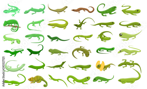 Fotografie, Obraz Lizard icons set