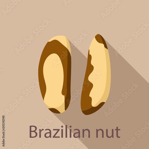 Foto  Brazilian nut icon