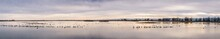 Sunset Panoramic View Of The Marshes Of Colusa Wildlife Refuge; Flocks Of Snow Geese Resting In The Shallow Waters; Sacramento National Wildlife Refuge, California