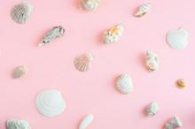 Creative Seashell Pattern Past...