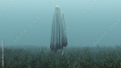 Floating Evil Spirit in a Grassy Field on a Foggy Day 3d Illustration 3d Renderi Canvas Print