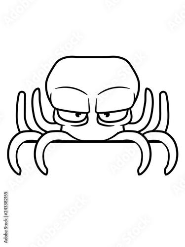 Verstecken Schild Rand Schreiben Name Text Bser Oktopus Krake