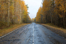 Diminishing Perspective Of Empty Road Amidst Trees Against Clear Sky In Forest During Autumn
