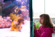 Girl Looking At Fish In Aquarium