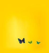 Three Fake Butterflies