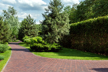 Red Tile Walkway In The Park With A Lawn Of Green Bushes And Deciduous Trees And Pine Trees With Hedges.