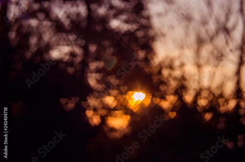Fotografiet  Defocus bokeh light of sun heart in foliage glare sunset background texture