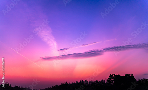 Photo Stands Candy pink Morning sun and sky