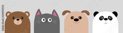 Photo  Cartoon kawaii baby bear, cat, dog, panda