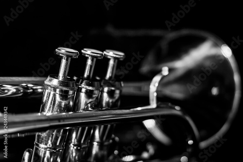 Canvas Print Classic musical cornet of black and white.