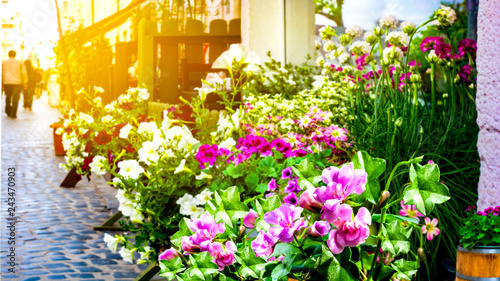 Street flower shop with colourful flowers . Colorful beautiful fresh flowers for sale on the marke