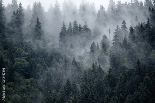 Montage in der Fensternische Dunkelgrau Misty mountain landscape