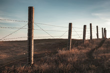 Perspective View Of An Old Barbed Wire Fence