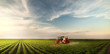 canvas print picture - Tractor spraying pesticides at  soy bean field