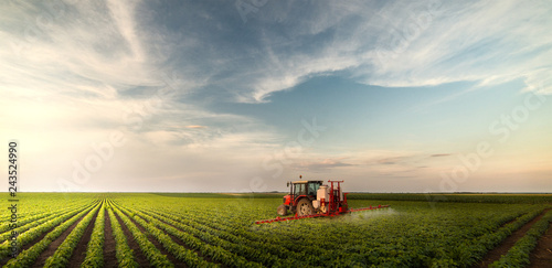 Fotografering Tractor spraying pesticides at  soy bean field