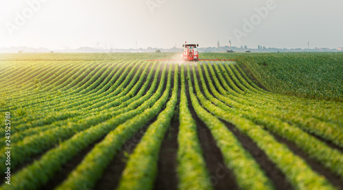 Fototapeta Tractor spraying pesticides at  soy bean field obraz